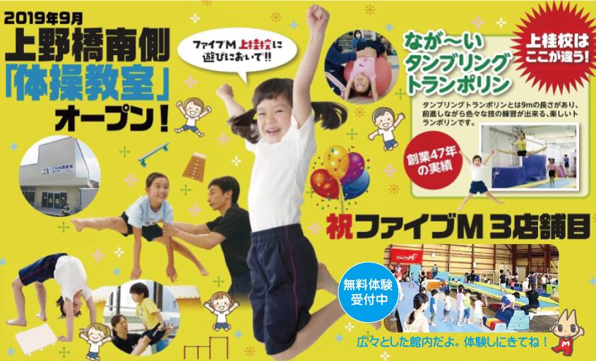 お子様のレベルに合わせた指導で体力・能力を高めていきます『こども器械体操』まずは無料体験