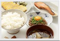 栄養吸収と有害物質の排泄