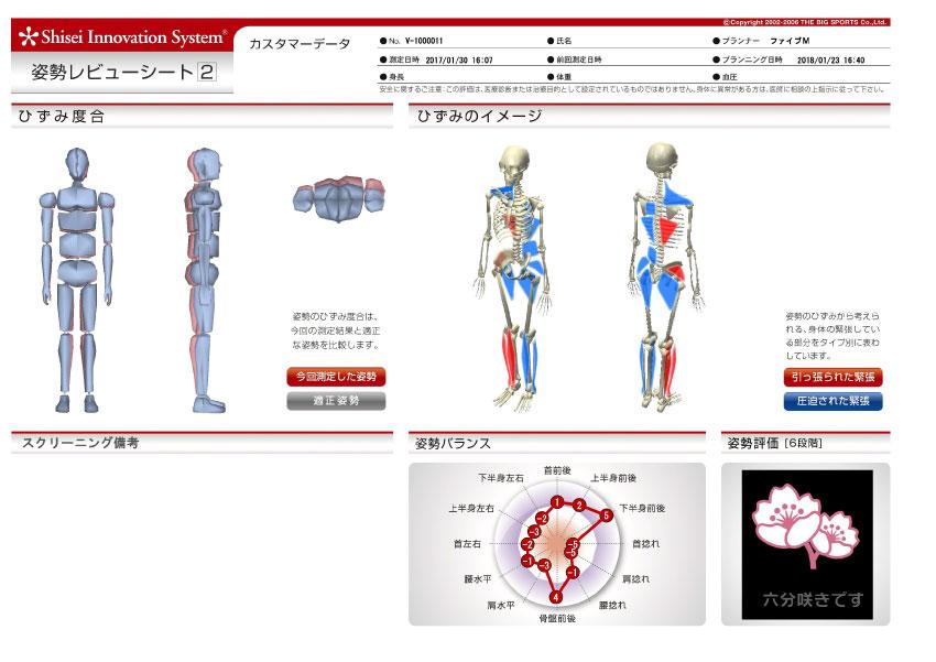 ひざ痛タイプ姿勢シート